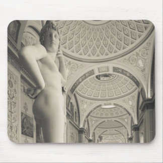 Winter Palace, Hermitage Museum, statue gallery 2 Mouse Pad