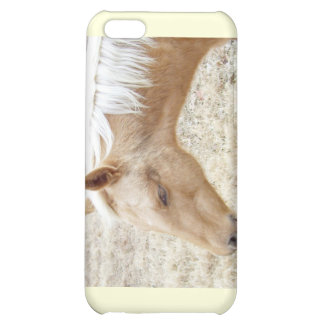 Winter Palomino Colt Pony Horse Cover For iPhone 5C