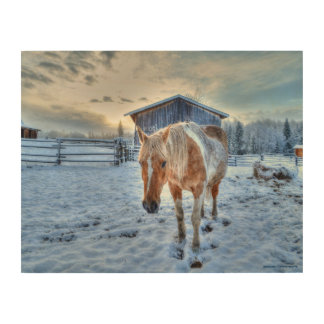 "Winter Palomino Paint ""Year of the Horse"" design 2 Wood Wall Decor"