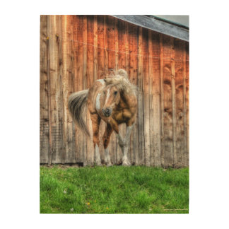 """Winter Palomino Paint """"Year of the Horse"""" design Wood Print"""