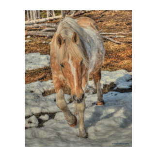 "Winter Palomino Paint ""Year of the Horse"" design Wood Wall Decor"