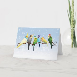 Winter Parakeets & Cockatiels Holiday Card