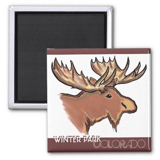 Winter Park Colorado brown moose natural magnet