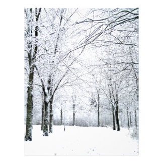 Winter park flyer design