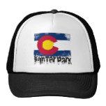 Winter Park Grunge Flag Hat