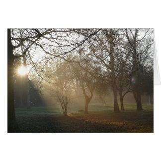 'Winter Park' Notecard