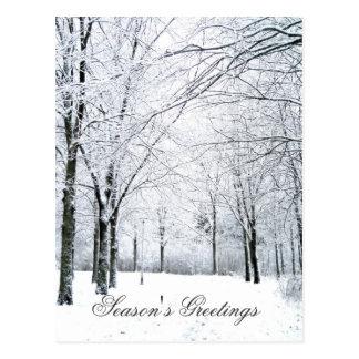 Winter park postcard