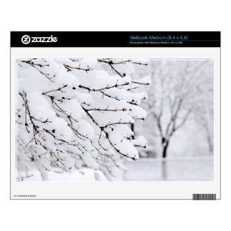 Winter park medium netbook skin