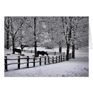 Winter Pasture Card