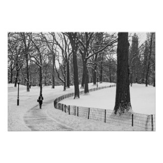 Winter Path Central Park Posters