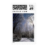 Winter Picture USPS Holiday Postage Stamps 2014