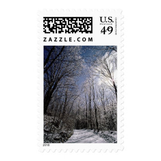 Winter Picture USPS Holiday Postage Stamps 2017