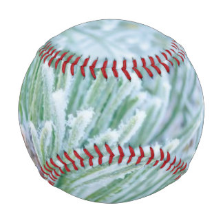 Winter Pine Baseball