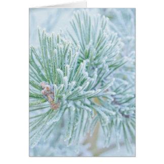 Winter Pine Card