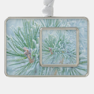 Winter Pine Christmas Ornament