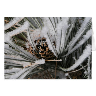 Winter Pine Cone Greeting Cards