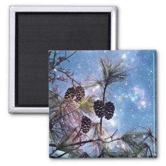 Winter Pine Cones under a starry night sky Magnet
