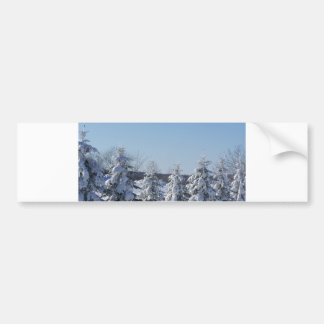 winter pine fence bumper sticker