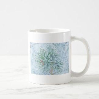 Winter Pine Mugs