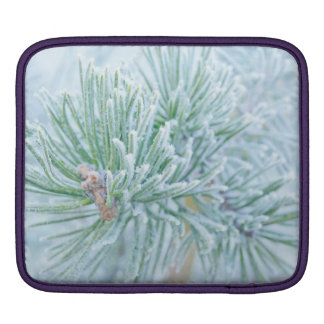 Winter Pine Sleeves For iPads