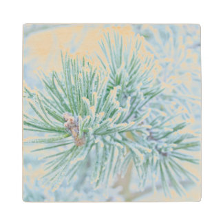 Winter Pine Wood Coaster