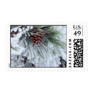 Winter Pinecone postage