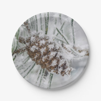 Winter, Pinecone, Snowflakes Paper Plates