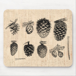 Winter Pinecones Mousepad