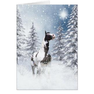 Winter pinto horse card