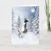 Winter pinto horse holiday card