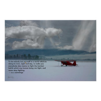 Winter Plane : Quote Poster