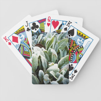 Winter Plants Bicycle Playing Cards