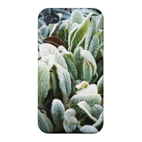 Winter Plants iPhone 4 Case