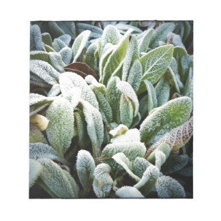 Winter Plants Notepad