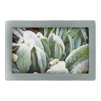 Winter Plants Rectangular Belt Buckle