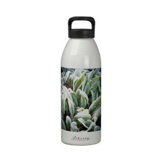 Winter Plants Reusable Water Bottles