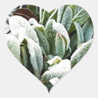 Winter Plants Sticker