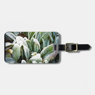 Winter Plants Tag For Bags