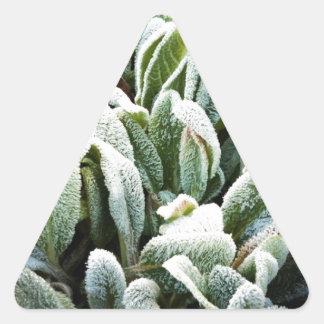 Winter Plants Triangle Sticker