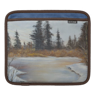 Winter Pond Landscape iPad iPad Sleeve