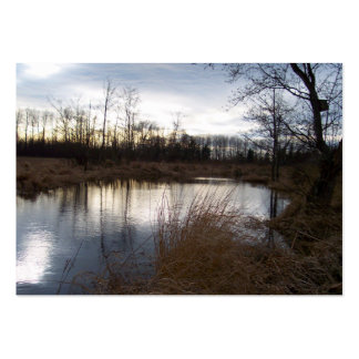 Winter Pond Large Business Card