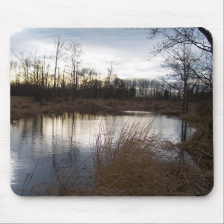 Winter Pond Mouse Pad