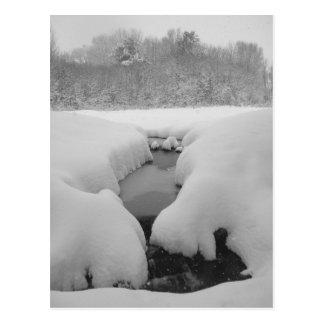 Winter Pond Postcard