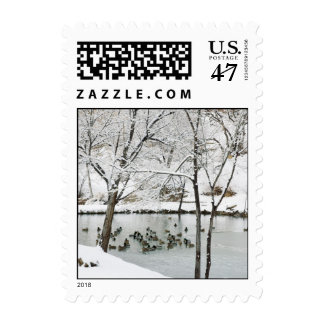 winter pond postcard stamp