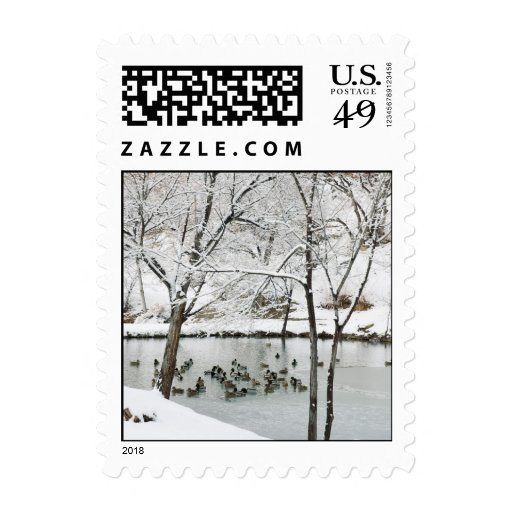 winter pond postcard stamp