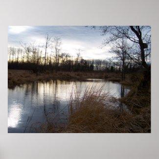 Winter Pond print