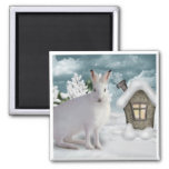 Winter Rabbit Magnet