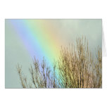 Winter Rainbow Greeting Card