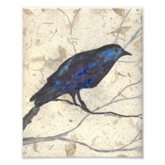 Winter Raven Art Print Photo Print