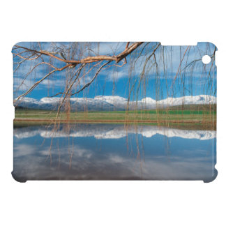 Winter Reflections. Ceres, Boland District iPad Mini Cases